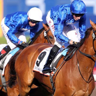 1 Bet A Day Horse Racing Advisory Service logo
