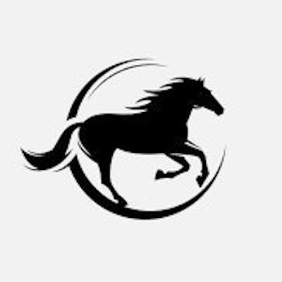 ChampionsTips1 logo