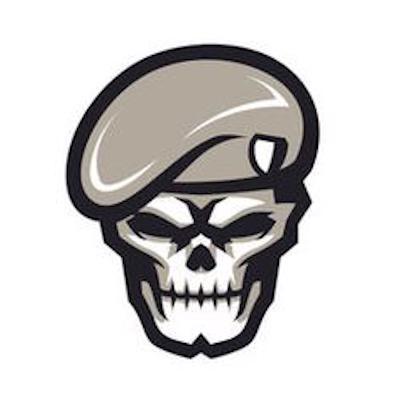 Dominik Tipster logo