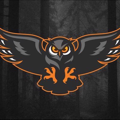 Nightowlbetting logo