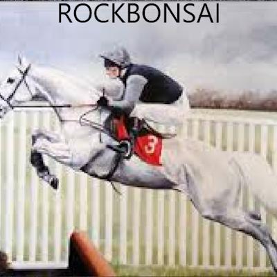 RockBonsai121 logo